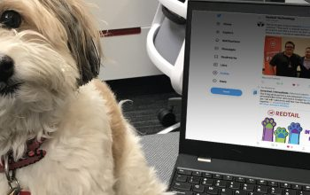 Dog sitting next to a laptop