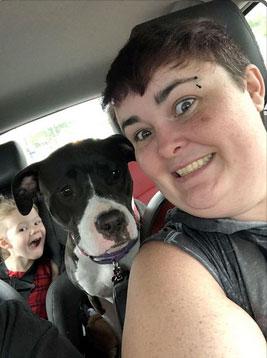 Dog named Sophie in the car