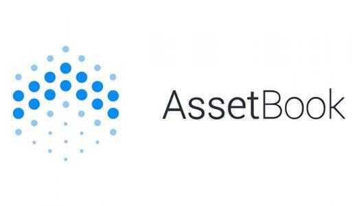 Asset book logo