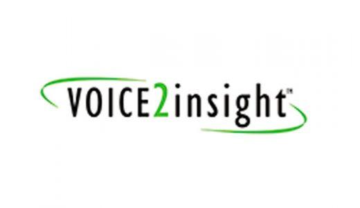 voice2insight logo